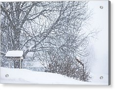 Acrylic Print featuring the photograph Winter White Out by Robert Clifford