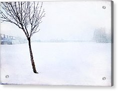 Winter Whiteout Acrylic Print