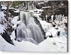 Acrylic Print featuring the photograph Winter Wilds At Erie Falls by Gene Walls