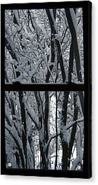 Winter Window Acrylic Print