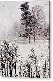 Winter Wonder 2 Acrylic Print