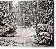Winter Wonder 7  Acrylic Print