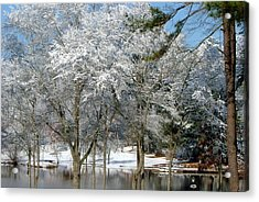 Acrylic Print featuring the photograph Winter Wonder Land Of Mine by Tanya Tanski