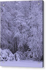 Winter Wonderland 1 Acrylic Print by Mike McGlothlen