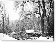 Winter Wonderland Acrylic Print by Allan Millora Photography