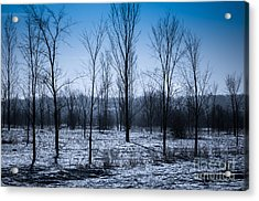 Acrylic Print featuring the photograph Winter Wonderland by Bianca Nadeau