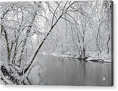 Winter Wonderland Acrylic Print by Brian Stevens