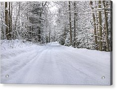 Winter Wonderland Acrylic Print by Donna Doherty