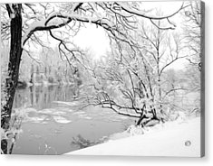 Winter Wonderland In Black And White Acrylic Print