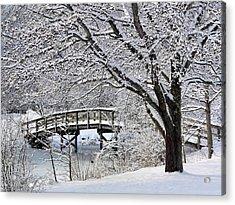 Winter Wonderland Acrylic Print by Janice Drew