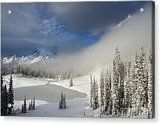 Winter Wonderland Acrylic Print by Mike  Dawson