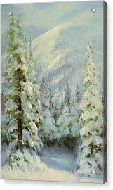 Winter Wonderland Acrylic Print by Richard Hinger