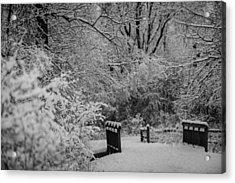 Winter Wonderland Acrylic Print by Sebastian Musial