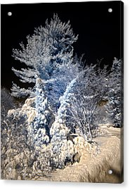 Acrylic Print featuring the photograph Winter Wonderland by Steve Zimic