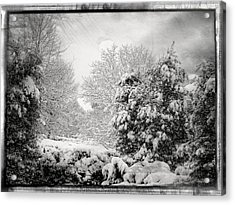 Winter Wonderland With Filmic Border Acrylic Print