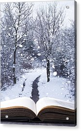 Winter Woodland Book Acrylic Print by Amanda Elwell