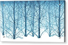Winter Woodland In Blue Acrylic Print