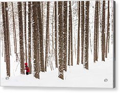 Winter Frolic Acrylic Print by Mary Amerman