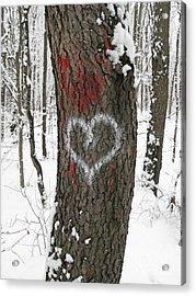 Winter Woods Romance Acrylic Print by Ann Horn