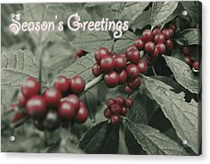 Winterberry Greetings Acrylic Print by Photographic Arts And Design Studio