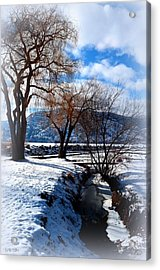 Wintercreek 2/8/2014  Acrylic Print by Guy Hoffman