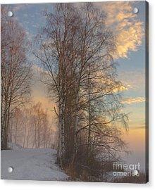 Winterday Acrylic Print by Sylvia  Niklasson