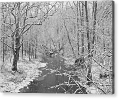 Winterlake Acrylic Print by Nancy Edwards