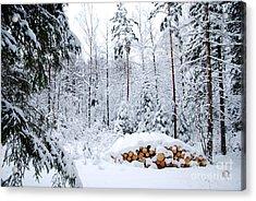 Acrylic Print featuring the photograph Winterland by Kennerth and Birgitta Kullman