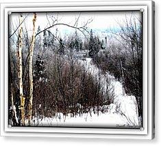 Winterlude Acrylic Print by Danielle  Parent