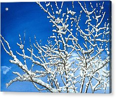 Winter's Artistry Acrylic Print by Barbara Jewell