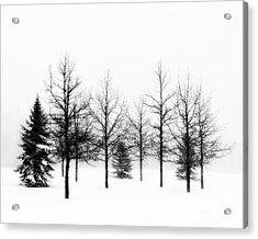 Winter's Bareness II Acrylic Print