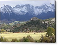 Winter's Coming Acrylic Print by Eric Glaser