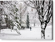 Winter's Covering Acrylic Print