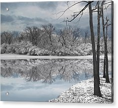 Winters Delight 6 - Limited Edition Acrylic Print