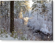 Winter's First Light Acrylic Print