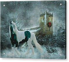 Winter's Hope Acrylic Print
