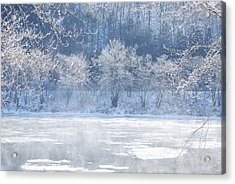 Winters Lace Acrylic Print by Jim Cook