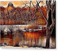 Winters Light Acrylic Print by Rick Todaro