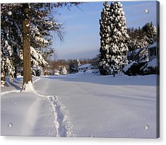Acrylic Print featuring the painting Winters Snow by James McAdams