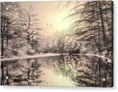 Winter's Soul Acrylic Print by Lori Deiter