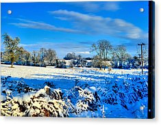 Winters View Acrylic Print by Dave Woodbridge