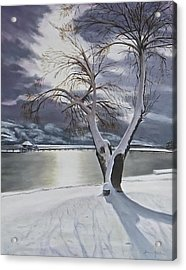 Winter's Whisper Acrylic Print by Bonnie Heather