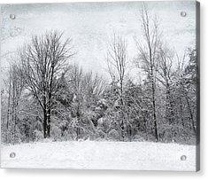 Winter's Wonder Acrylic Print by Kathi Mirto