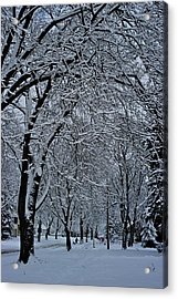Winter's Work Acrylic Print by Joseph Yarbrough