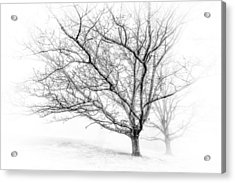 Winter's Work Acrylic Print