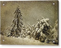 Winter's Wrath Acrylic Print by Lois Bryan