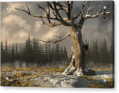 Winterscape Acrylic Print by Daniel Eskridge