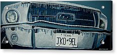 Acrylic Print featuring the painting Winterschlaf Pferd by Jeffrey S Perrine