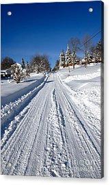 Wintery Road Acrylic Print by Amy Cicconi