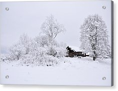 Wintry Landscape Acrylic Print by Conny Sjostrom
